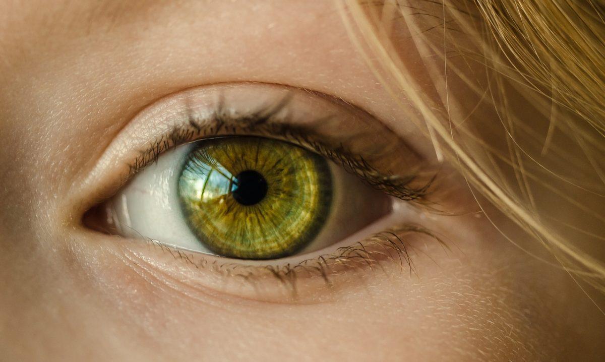 Oczy to wyrafinowany narząd. To właśnie dzięki nim widzimy.